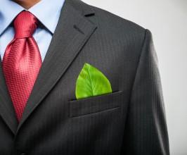 Rijk wil 30% groene stroom in Nederland kopen