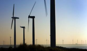 Windpark Zeebrugge twee keer zo duur als Borssele